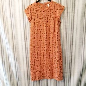 Cato Autumnal Full Lace Shift Dress Size 16